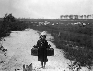 agriculture/child labor 1910 year old berry picker rose biodo