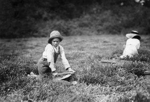 agriculture/child labor 1911 11 year old boy working harvest