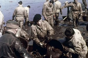 Cleanup efforts on a French beach after an oil spill at sea. Photographed c1970.