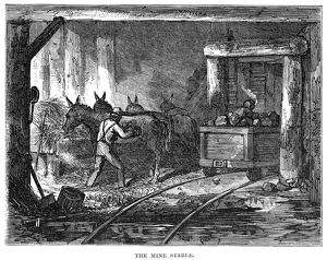 COAL MINE: STABLE, 1867. The stable at a coal mine near Pottsville, Pennsylvania