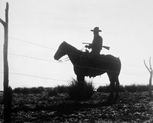 THE COWBOY, 1954. A scene from the 1954 film, 'The Cowboy.'