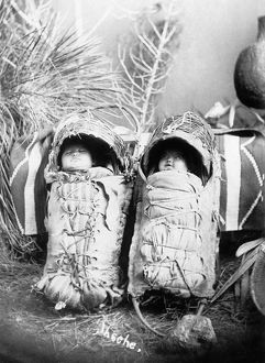 CRADLEBOARDS, 1916. Native American, possibly Apache, babies in cradleboards. Photograph