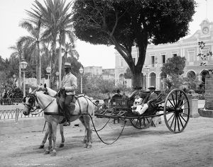 CUBA: HAVANA, c1904. A volanta on the street in Havana, Cuba. Photograph, c1904