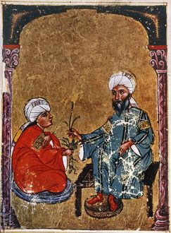 disease healthcare/discuss mandrake arabic ms materia medica 1229 a