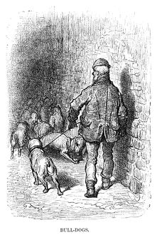 DORE: LONDON, 1872. 'Bull-Dogs.' Wood engraving after Gustave Dore,