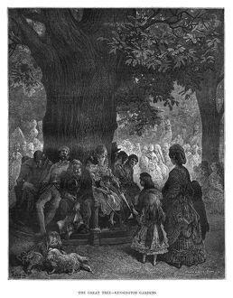DORE: LONDON, 1872. 'The Great Tree - Kensington Gardens