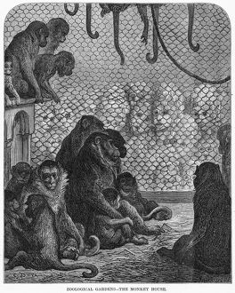 DORE: LONDON, 1872. 'Zoological Gardens - The Monkey House