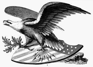 EAGLE, 19th CENTURY. An American bald eagle. American typefounder's cut, 19th century.