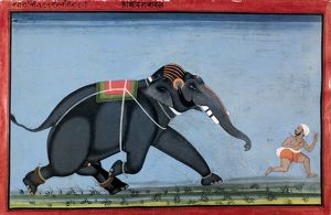 ELEPHANT & TRAINER, c1750. The elephant Dilbadal chasing his trainer