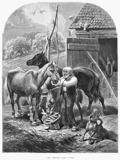 FARMER, 1873. 'Old friends.' Wood engraving, 1873, by Charles Maurand, after