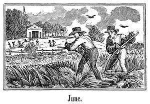 FARMERS MOWING. Two farmers mowing hay with scythes. Wood engraving, 19th century