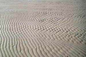GALVESTON: BEACH. Intersecting lines in the sand at Galveston, Texas. Photograph