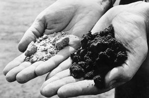 A geologist holds handfuls of dry sand (left) and black, oil-wet sand after performing