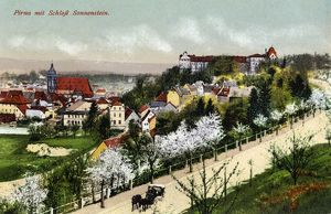GERMANY: PIRNA, c1920. View of Pirna including Sonnenstein Castle. Photograph, c1920