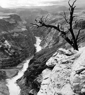 GRAND CANYON, 1958. Still from the documentary film 'Grand Canyon,' 1958.