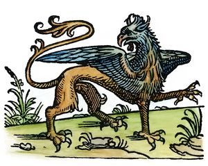 GRIFFIN, 1533. Woodcut, 1533, from a French signet