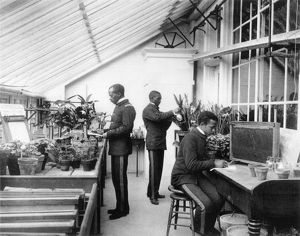 HAMPTON INSTITUTE, c1899. Students in the agriculture laboratory