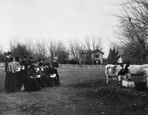 HAMPTON INSTITUTE, c1900. Agricultural field work in sketching at Hampton Institute