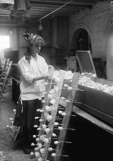 HINE: FLOWER FACTORY, 1917. 14-year-old Margaret Ciampa working at the Boston Floral
