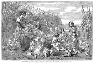 HOP PICKERS, 1851. A family of hop pickers. Wood engraving after a painting by William Lee
