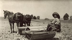 KENTUCKY: FARM, 1916. A boy driving a horse drawn roller on his father's farm in