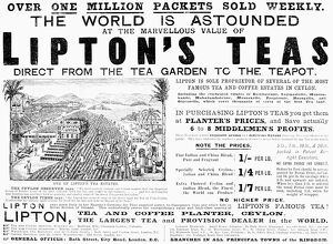 LIPTON TEA AD, 1892. From an English newspaper of 1892