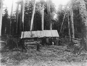 LOG CABIN, c1906. Two loggers and a dog standing in front of a log cabin in the