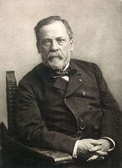 LOUIS PASTEUR (1822-1895). French chemist and microbiologist