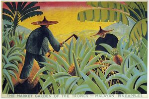 MALAYA: PLANTATION, 1931. 'The Market of the Garden Tropics - Malayan Pineapples