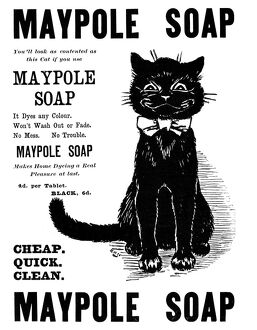 cats/maypole soap 1898 english newspaper ad 1898