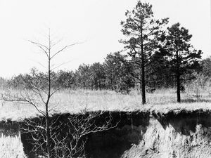 whats new/mississippi erosion 1936 eroded farmland near