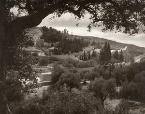 MOUNT OF OLIVES. View of the Garden of Gethsemane and the Mount of Olives, with the