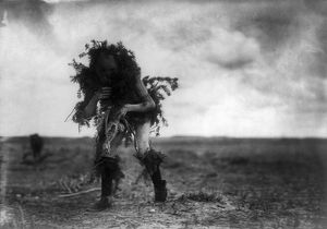 NAVAJO DANCER, c1905. A Navajo man dressed in spruce branches as the deity Tonenili
