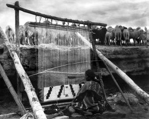 NAVAJO WEAVER, c1915. A Navajo woman weaving a blanket on a loom, with a herd of