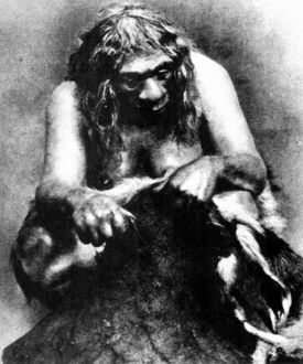 NEANDERTHAL WOMAN cleaning a deerskin. Photograph of a museum display, 1929.