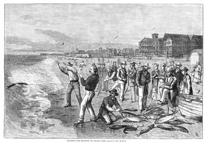 sports/new jersey fishing 1880 squidding blue fish