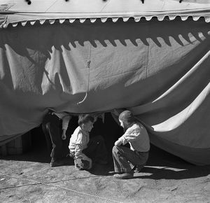 whats new/new mexico circus 1936 boys sneaking circus