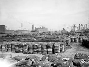 us cities/new orleans cotton c1903 bales cotton levee