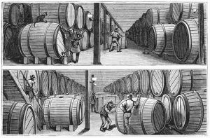 NEW YORK: WINE INDUSTRY. Wine cellars of Werner and Company on Park Place in New York City