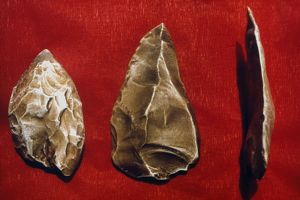 PALEOLITHIC TOOLS. Paleolithic scraper (left) and arrow heads, c40,000 B.C.