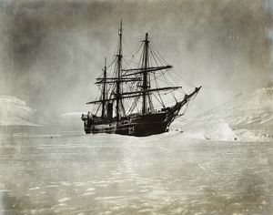 POLAR EXPEDITION, 1901. The ship 'America' of the Baldwin-Ziegler North Pole