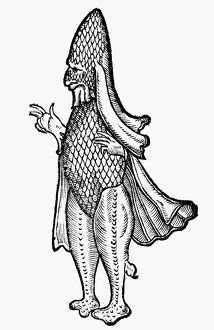 SEA MONSTER, 1560. Bishop-like sea monster allegedly sighted off the coast of Poland