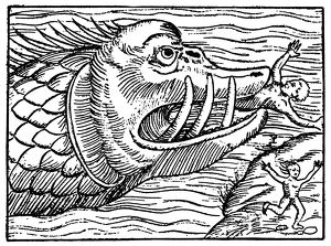 SEA MONSTER. Medieval woodcut
