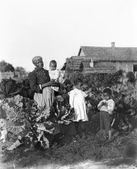 african american history/sharecropper family 1902 sharecropper family