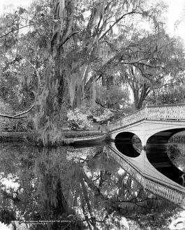 SOUTH CAROLINA: LAKE, c1900. Bridge over the lake at Magnolia-on-the-Ashley, or Magnolia Gardens