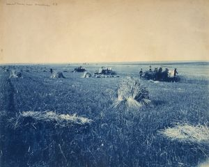 SOUTH DAKOTA: HARVEST. Harvesting near Brookings, South Dakota. Cyanotype photograph