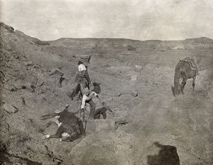 TEXAS: COWBOYS, c1907. Two cowboys pulling a cow lying on its side from a gully in Texas