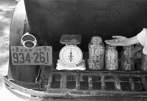 whats new/texas seeds 1939 jars seeds sale luggage carrier