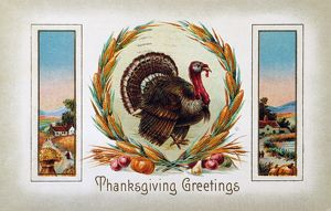 THANKSGIVING CARD, 1910. American Thanksgiving Day greeting card, 1910, featuring a turkey
