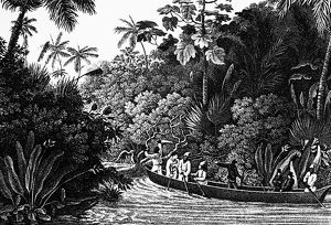 TRAVELS IN BRAZIL, 1820. A drawing from Prince Alexander Philipp Maximilian of